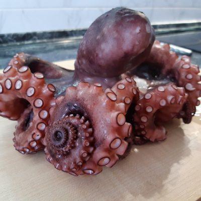 Базовый рецепт приготовления осьминога